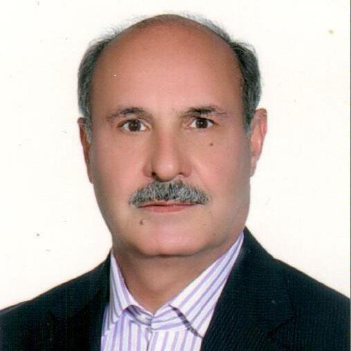 مهدی فرزین